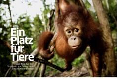 Greenpeace Magazine